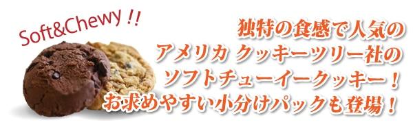 独特の食感で人気のアメリカクッキーツリー社のソフトチューイークッキー